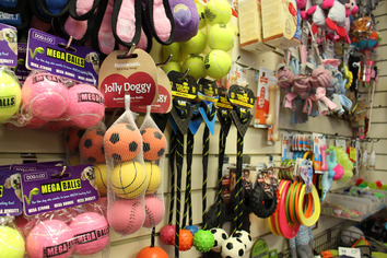 Dog toys and balls.